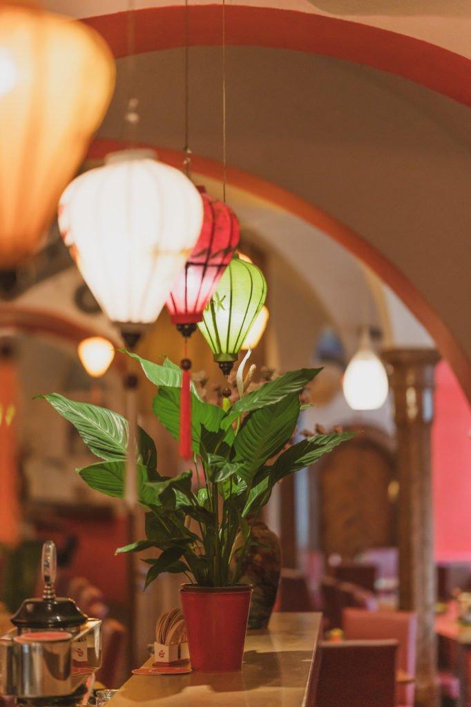 tvb-hallein-duerrnberg-erleben-shopping-viet-wok-pflanzen-dekoration
