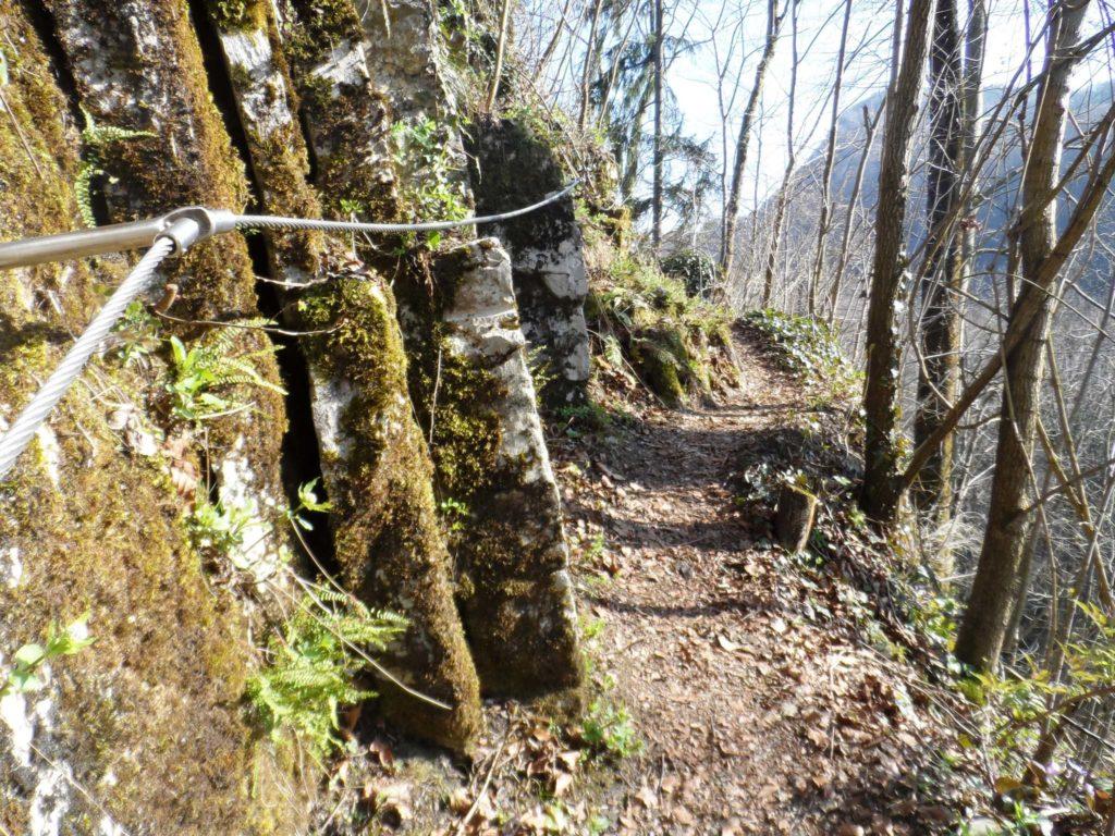 tvb-hallein-duerrnberg-erleben-wandern-ruine-gutrat-wanderpassage